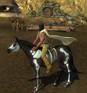 Hippy on a horse