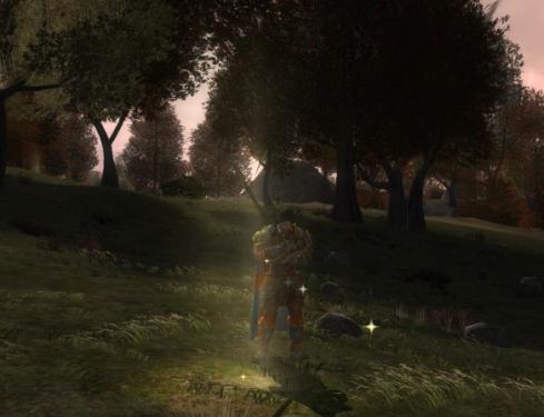 LOTRO: Seeing Spots in Eregion